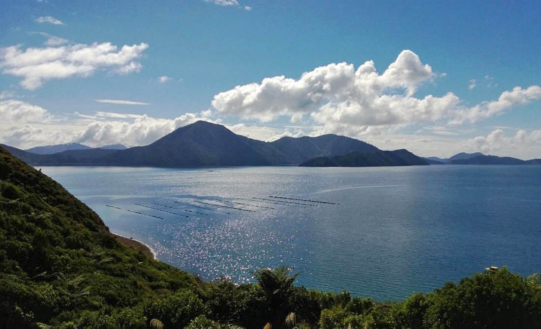 Remote Accommodation Marlborough Sounds